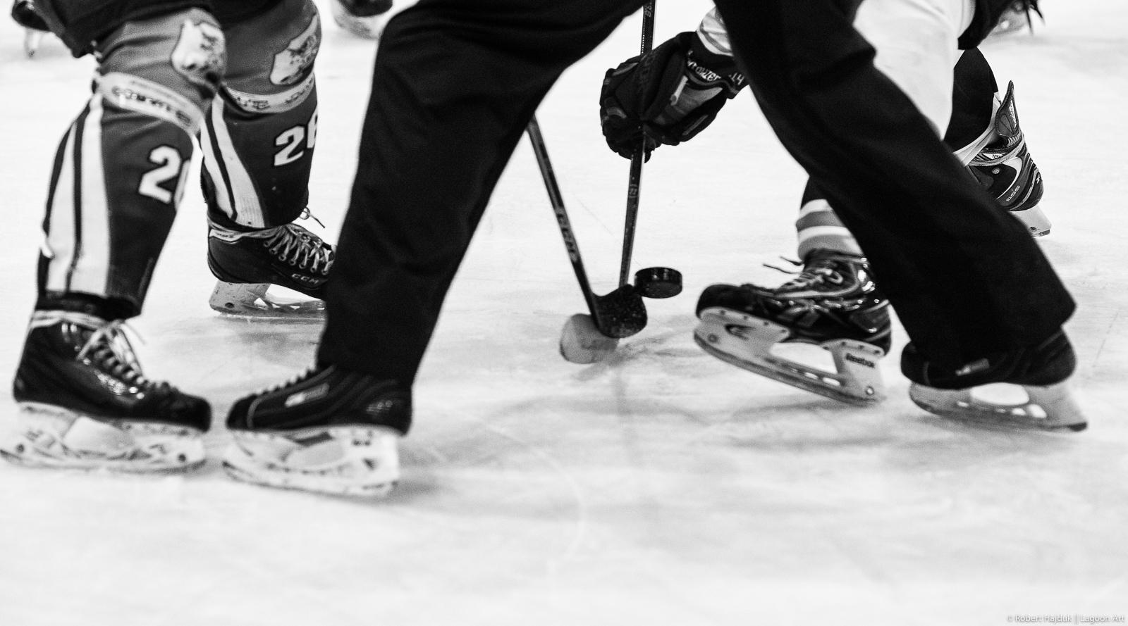I Liga - MH Automatyka Stoczniowiec 2014 vs UKH Dębica || 2015-11-15, Gdańsk, Hala Olivia, Polska || © Copyright 2015 || Robert Hajduk - Lagoon Art || All Rights Reserved ||